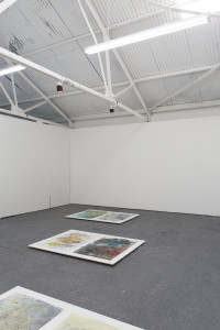 Installation view, Tomorrow's Harvest, Bosse & Baum, London