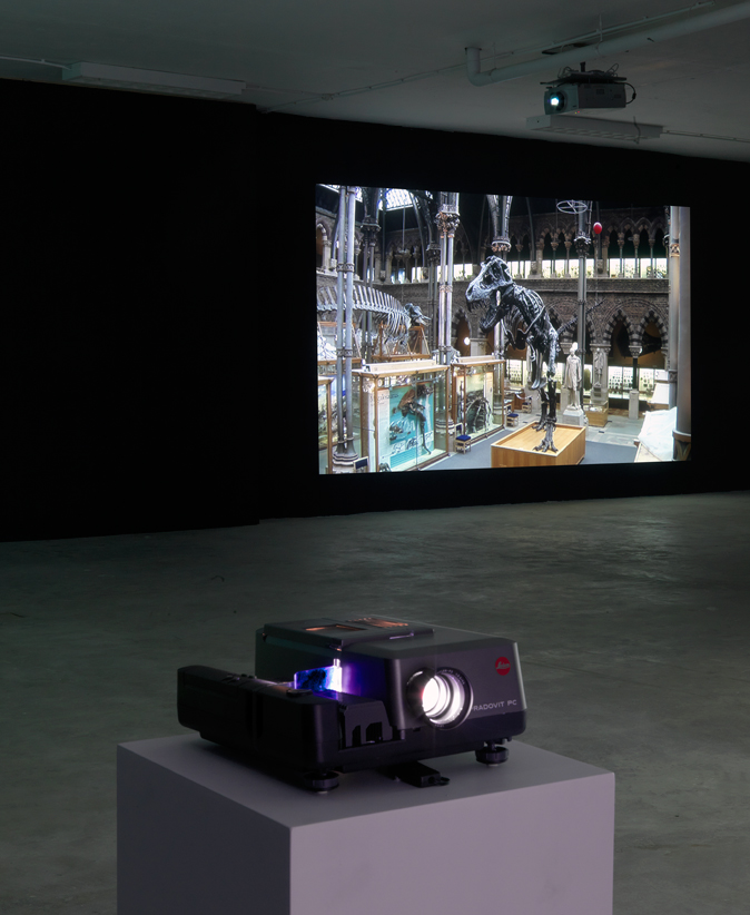Sybren Renema. Elective Affinities (Stanley), single channel video 8'40'', 2011.