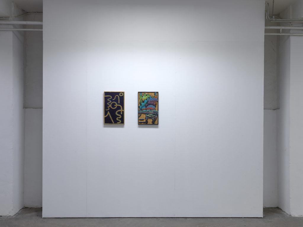 Installation view 'Timicho', solo exhibition by Alejandra Venegas