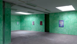 Installation view, 'I won't have the luxury of seeing scenes like this much longer', Dürst Britt & Mayhew, The Hague, 2015.