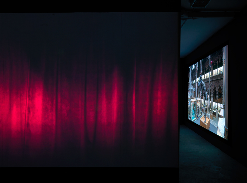 Installation view 'Silent Light', Dürst Britt & Mayhew, 2016.